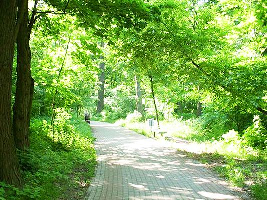 Сырецкий парк